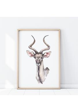 Safari plagát s portrétom antilopy na bielom pozadí