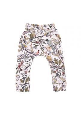 Detské bavlnené nohavice s gumičkou a s motívom ornitológie
